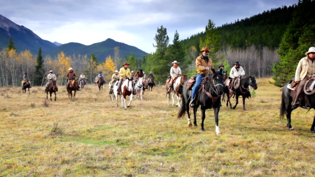 Large Group of Cowboys on old west cattle roundup