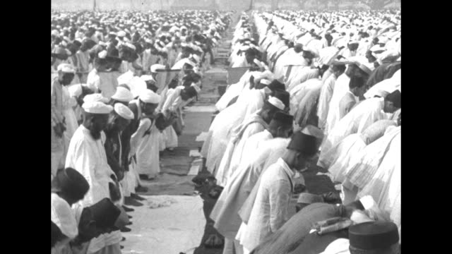 large group of muslim men stand in rows and bow and pray / tilt down pan hug group of muslims praying / men shake out prayer mats / ms huge group of... - islam stock-videos und b-roll-filmmaterial