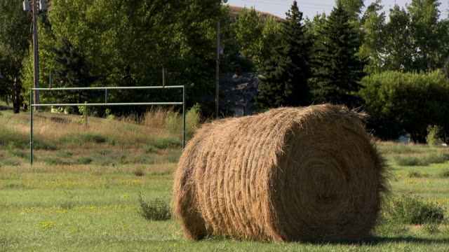 large haystack on a field - haystack stock videos & royalty-free footage