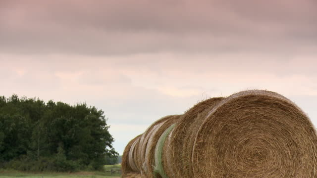 large haystack on a field - manitoba stock videos & royalty-free footage