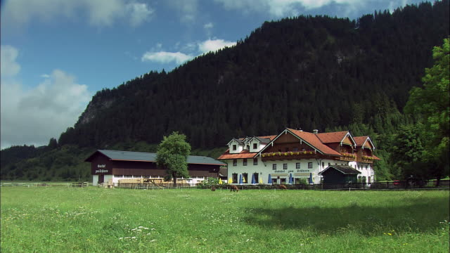 WS Large house and barn in Alpine landscape, horses grazing on pasture, Bavaria, Germany