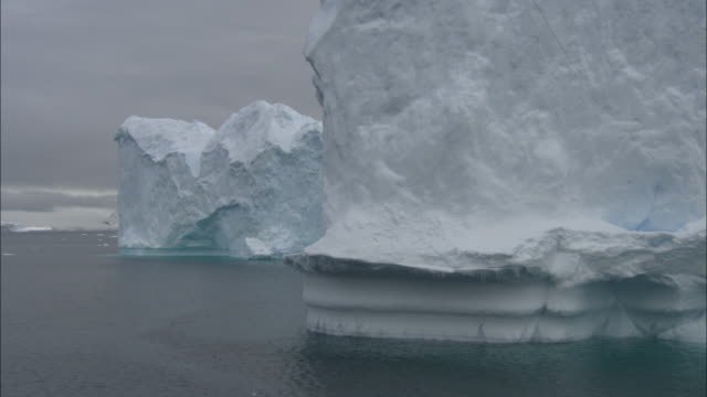 MS, PAN, Large iceberg in sea, Cuverville Island, Antarctica