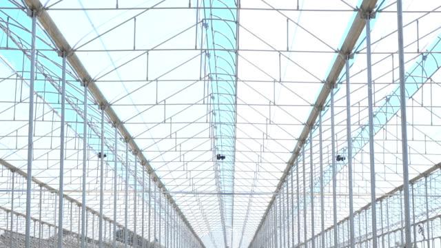 große industrielle gewächshäuser. grüne betten. - gewächshäuser stock-videos und b-roll-filmmaterial