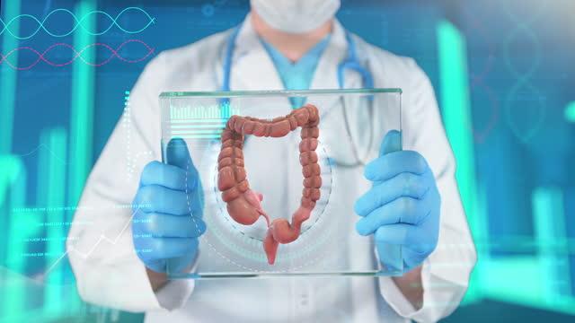 large intestine examining - 4k resolution - biomedical illustration stock videos & royalty-free footage