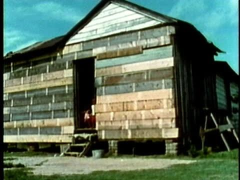 large multigenerational family living together in small shack house/ usa/ audio - 掘建て小屋点の映像素材/bロール