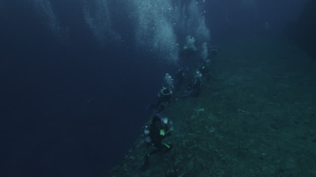 large number of divers investigate ledges of yonaguni monument. japan - tauchgerät stock-videos und b-roll-filmmaterial