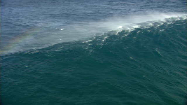AERIAL WS TS Large ocean wave forming and breaking, Kahului, Hawaii, USA