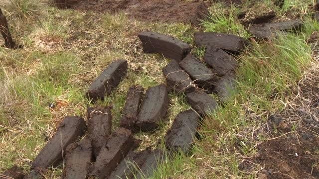 large pieces of wet peat - gräsmatta odlad mark bildbanksvideor och videomaterial från bakom kulisserna