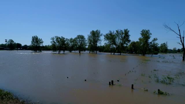 vídeos y material grabado en eventos de stock de gran parcela de terreno completamente inundado por el huracán harvey árboles y bosque inundados - gulf coast states