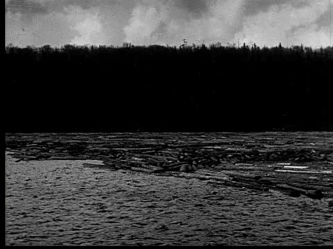 1927 b/w ws pan large quantity of logs floating in ranger lake, ontario, canada - 1927 stock videos and b-roll footage