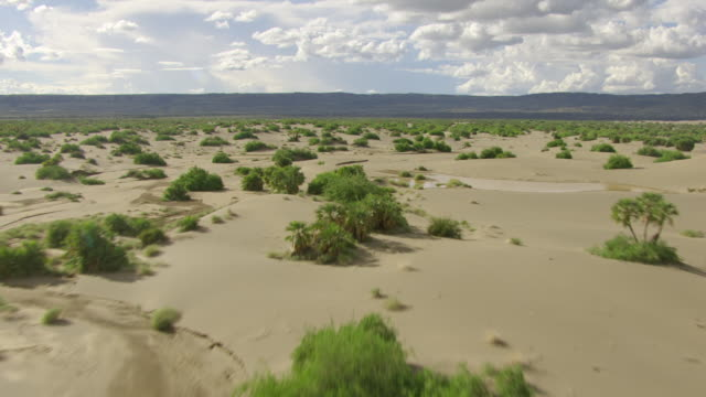 WS AERIAL POV Large, sandy landscape with bushes, mountains in background / Kenya