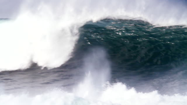 stockvideo's en b-roll-footage met ms pan large set of waves moving over  outer reefs  / haleiwa, hawaii, united states - groot