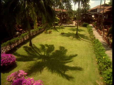 vidéos et rushes de large shadow palm tree on beautiful green lawn surrounded by flowers pan over to boat shaped house in hotel complex - angle de prise de vue