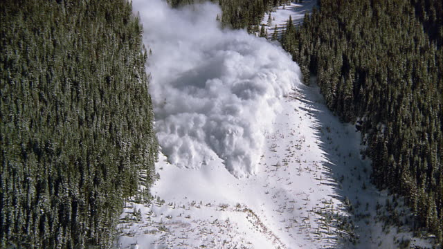 A large snow avalanche flows between tree lines and over a cliff on a mountainside in the San Juan Mountains.