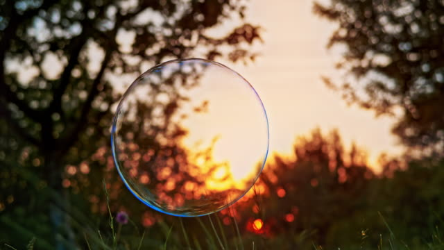 slo mo large soap bubble bursting as it touches grassy ground outside in the setting sun - bubble stock videos & royalty-free footage
