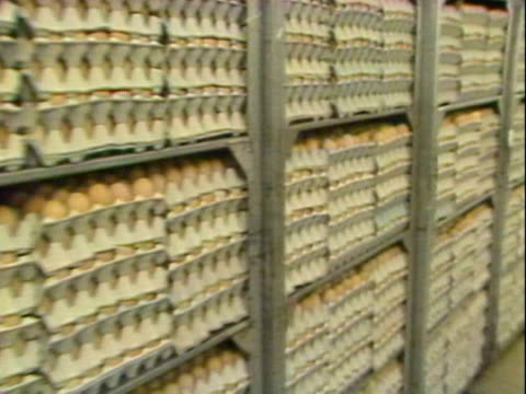 large stockpiles of eggs are held in a warehouse during the salmonella egg scare controversy. 1988. - salmonella video stock e b–roll