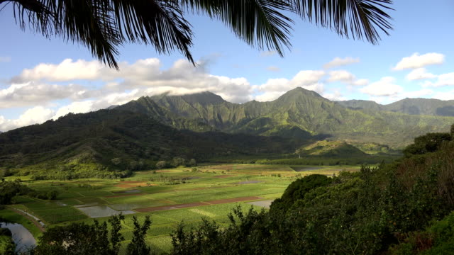large towering mountains in distance on kauai island - butte rocky outcrop stock videos & royalty-free footage