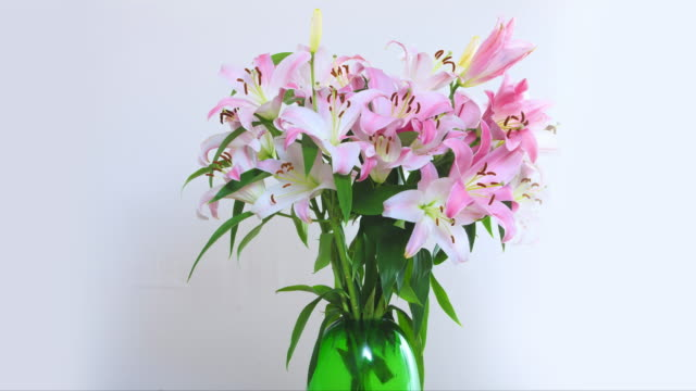 A large vase of Oriental Lilies explode into blossom from a bud.