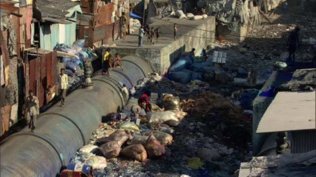 stockvideo's en b-roll-footage met ws tu ha large water pipe and piles of trash in slum, modern buildings in background, mumbai, maharashtra, india - sloppenwijk
