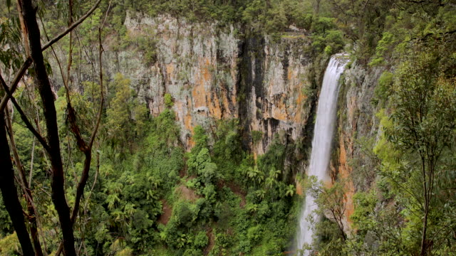 large waterfall spilling over cliff face in australian rainforest - non urban scene stock videos & royalty-free footage