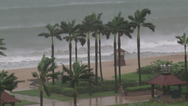 Large waves and strong winds lash sandy beachfront , Typhoon Conson, China, 16 July 2010 / AUDIO