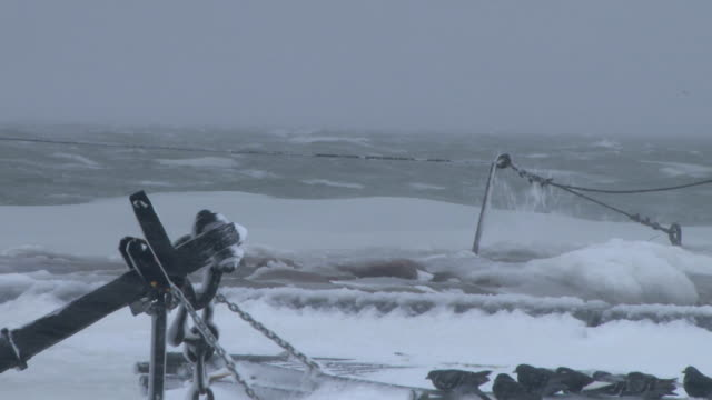 Large waves breaking on the shore during a blizzard in New England