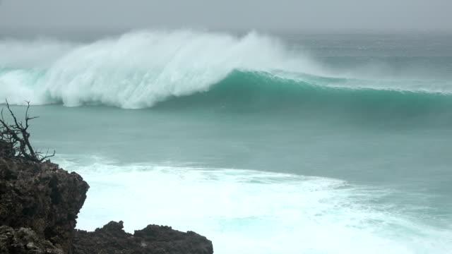 vidéos et rushes de large waves crash ashore as a powerful typhoon maria nears landfall in july 2018 - raz de marée