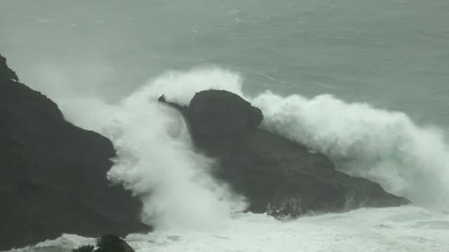 vídeos de stock, filmes e b-roll de large waves crash ashore as typhoon hagibis nears landfall on japan - ilha
