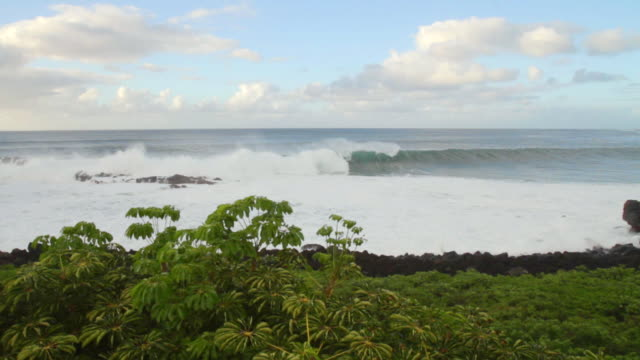 ms pan large waves moving into waimea bay / haleiwa, hawaii, united states - hawaii islands stock videos & royalty-free footage