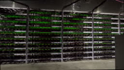 Large wired internet datacenter storage. Cryptocurrency mining equipment on large farm. ASIC miners on stand racks mine bitcoin in server room. Supercomputer blinking with lights. Steadycam footage