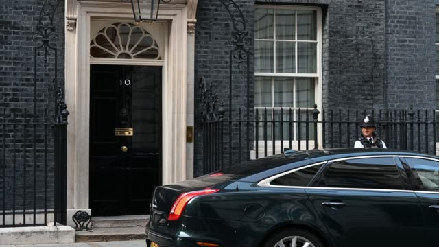 larry the official resident cat of the prime minister of the united kingdom is let into to the door of 10 downing street on september 21 2020 in... - cat family stock videos & royalty-free footage
