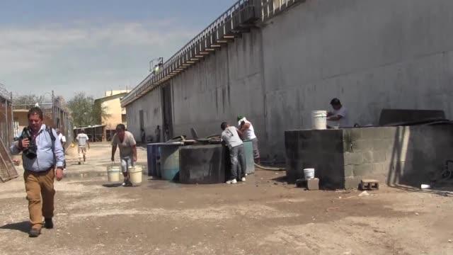 las carceles mexicanas enfrentan desde hace anos una crisis manifestada en motines asesinatos fugas violencia - acanthaceae stock videos & royalty-free footage