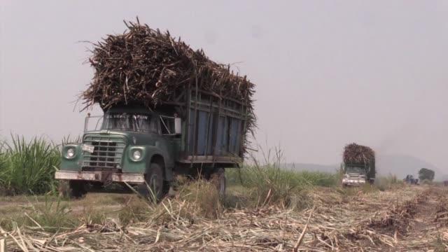vídeos y material grabado en eventos de stock de las delegaciones tecnicas de mexico y estados unidos estan al borde de lograr un acuerdo sobre las importaciones estadounidenses de azucar mexicano... - ee.uu