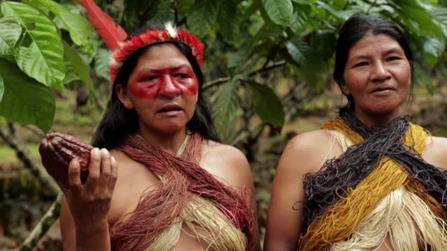 las indigenas waorani cultivan cacao a cambio de que los hombres de la tribu dejen de cazar - tribu sudamericana video stock e b–roll