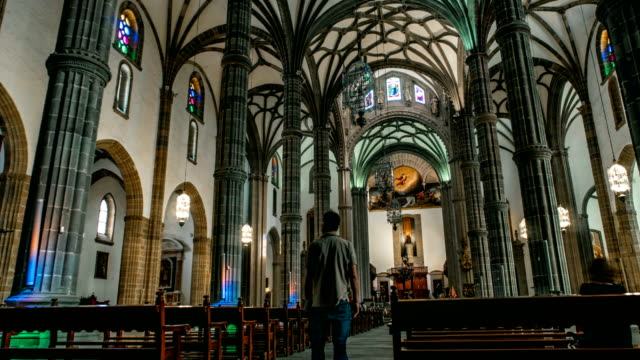las palmas cathedral interior - castle stock videos & royalty-free footage
