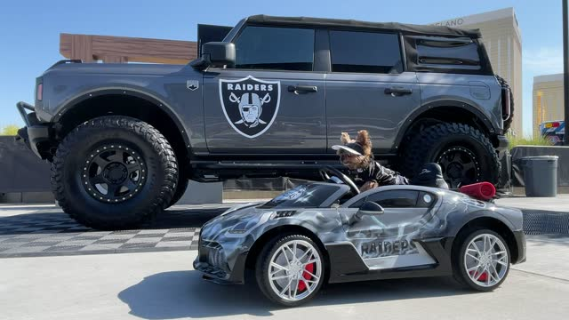 las vegas raiders fan dog bam bam outside allegiant stadium before the nfl game between the miami dolphins and the las vegas raiders on september 26,... - remote control stock videos & royalty-free footage