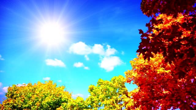 vidéos et rushes de dernière rayon de soleil en automne sky - en dernier