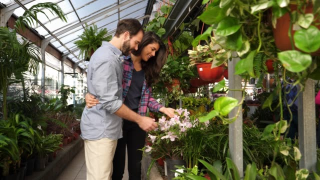 latin american couple shopping for flower plants at a garden center walking and woman smelling a flower plant - garden center stock videos and b-roll footage