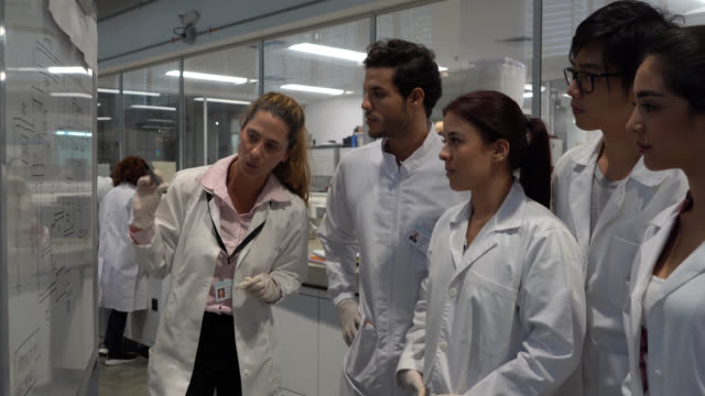 latin american teacher explaining an experiment on white board to chemistry students while they pay close attention - manufacturing machinery stock videos & royalty-free footage