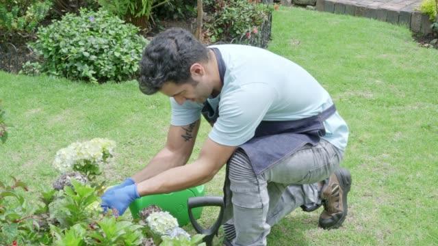 ラテンの男は彼の白い花を配置し、散水します。(スローモーション) - 若い男性一人点の映像素材/bロール