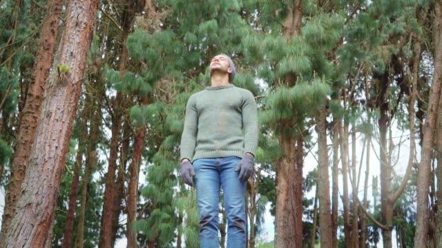 stockvideo's en b-roll-footage met latijnse man in het midden van het bos, omgeven door bomen, ademhaling de zuivere lucht van het bos, terwijl hij opent zijn armen en geniet van de natuur. (slow motion) - berk