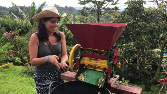 latin woman in a straw hat is turning over a organic coffee peeling machine in a black bucket in jardín, antioquia / colombia - coffee variation stock videos & royalty-free footage