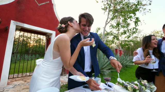 vídeos y material grabado en eventos de stock de ms laughing bride wiping frosting off grooms face while serving wedding cake to guests - personas bellas