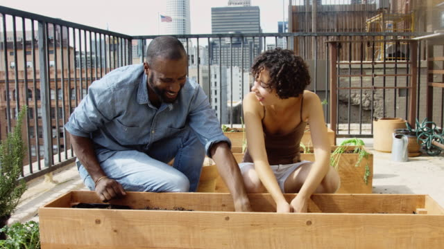 Laughing Couple Working on Rooftop Garden