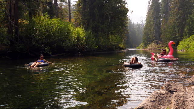 vidéos et rushes de ms laughing female friends hanging out in inner tubes on river on summer afternoon - flotter sur l'eau