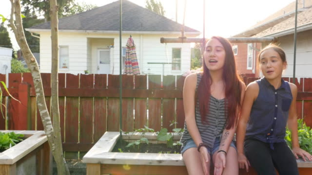 stockvideo's en b-roll-footage met ms laughing sisters in backyard garden of home on summer evening - zus