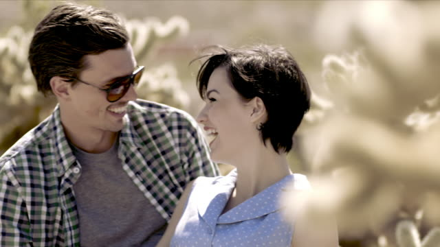 laughing young couple kiss in cactus grove - cute cactus stock videos & royalty-free footage