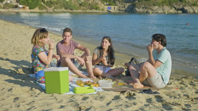 laughing young friends enjoying lunch at costa brava beach - cool box stock videos & royalty-free footage