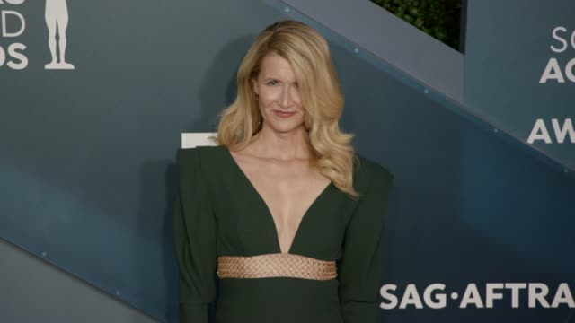 laura dern at the 26th annual screen actors guild awards arrivals at the shrine auditorium on january 19 2020 in los angeles california - screen actors guild awards stock videos & royalty-free footage