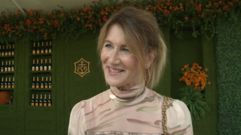 laura dern at the eighth annual veuve clicquot polo classic, los angeles at will rogers state historic park on october 14, 2017 in pacific palisades,... - laura dern stock videos & royalty-free footage